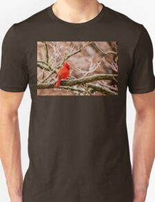 An Icy Tale Unisex T-Shirt