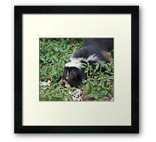 "Popcorn Leaves and...."" Framed Print"