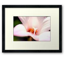 Bokeh Lily Framed Print