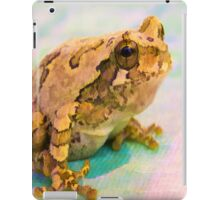 Painted Frog iPad Case iPad Case/Skin