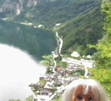 Hi Hallstatt! by VeronicaPurple