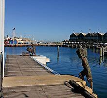 Fremantle. Fisherman by Tony Brown