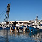Fremantle-Fishing Boats by Tony Brown