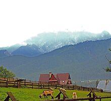Koscielisko, Mountain scene by Tony Brown