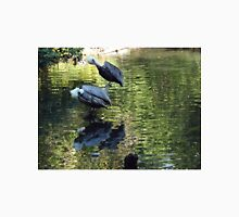 Exotic Bird and Reflection, Bronx Zoo, Bronx New York T-Shirt
