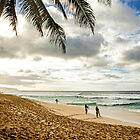 Welcome To: The North Shore by Andrew Simoni