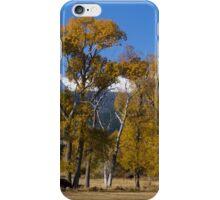 First Snow iPhone Case/Skin