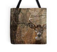 Whitetail Buck Tote Bag