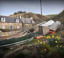 Crovie in spring (framed) by Morag Anderson