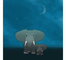 Elephant and a baby at night Photographic Print