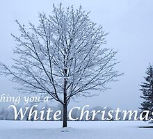Wishing you a White Christmas! by Gene Walls