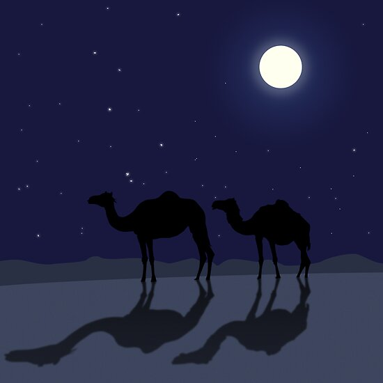 Dromedary camels in Sahara desert night by CatchyLittleArt