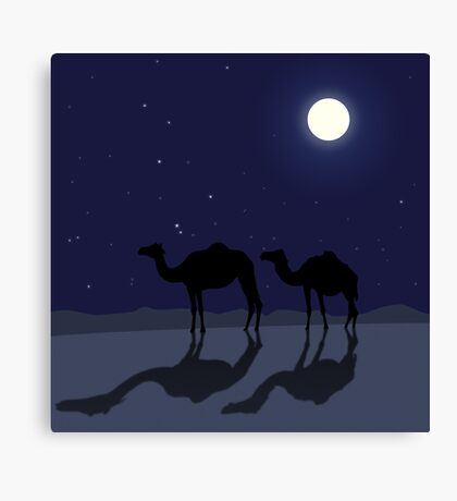Dromedary camels in Sahara desert night Canvas Print