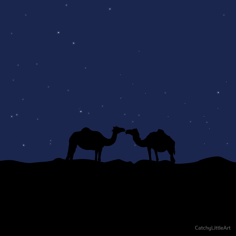 Lovely camels in desert at night by CatchyLittleArt