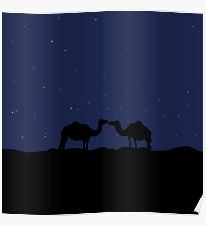 Lovely camels in desert at night Poster