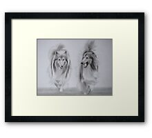 Rough Collie Retrievers Framed Print