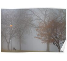Foggy Lake View Poster