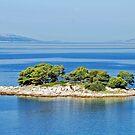 Small island off the Dalmation coast by Arie Koene