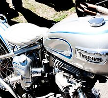 Custom Painted Triumph Motorcycle by laurenelisabeth