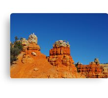 Colours near Red Canyon, Utah Canvas Print