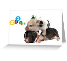 2 MICRO PIGS CUDDLING Greeting Card
