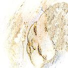Sleeping Joy by ArtChances