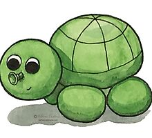 Huw the Turtle by katherinedownie