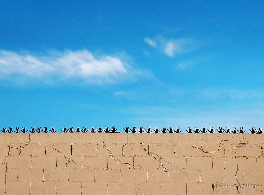 Prickly Wall by Richard G Witham