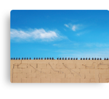 Prickly Wall Canvas Print
