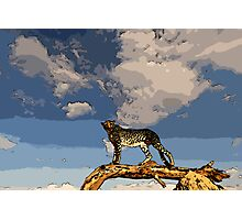 Basecamp Cheetah Photographic Print