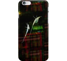 The Stylish Bug - 2 iPhone Case/Skin