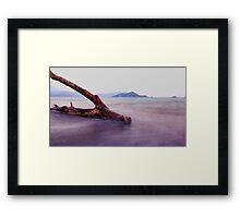 log Framed Print