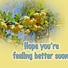 Feel Better Soon Greeting Card - Barberry Blossoms by MotherNature2