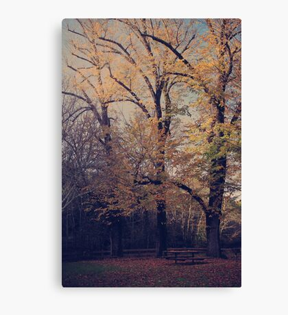 Under the Trees We'll Sit Canvas Print