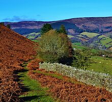 Descent from Pen Cerrig-Calch by Paula J James