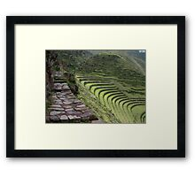 Path to an Andean  Wonder Framed Print