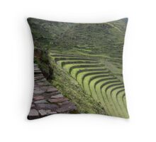 Path to an Andean  Wonder Throw Pillow