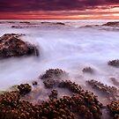Turrimetta dawn by Geraldine Lefoe