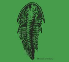 Trilobite Mesonacis vermontanus Kids Clothes