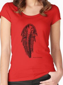 Trilobite Mesonacis vermontanus Women's Fitted Scoop T-Shirt