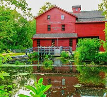 Bonneyville Mill by Mary Carol Story