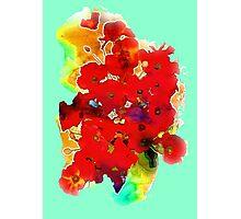 Still life ... poppies  Photographic Print
