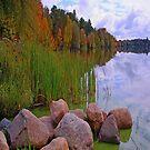 Rib Lake iPad Case by ipadjohn