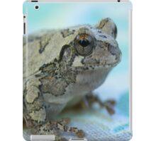 My Blue Frog iPad Case iPad Case/Skin