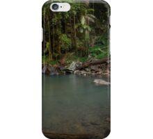 Curtis Falls Mt Tamborine Panorama iPhone Case/Skin