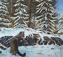 North americain cougar by gdwildart