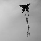 Butterfly Kite by pr0digal