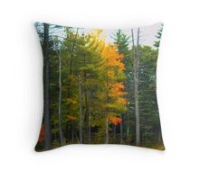 NH Foliage in low key Throw Pillow