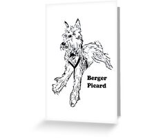 Berger Picard with Words Greeting Card