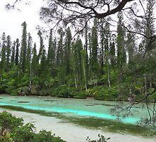 New Caledonia - Isle of Pines Naural Aquarium by kelliejane